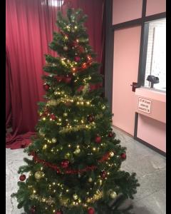 Complete Kerstboom